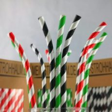 PioTip Paperstraws